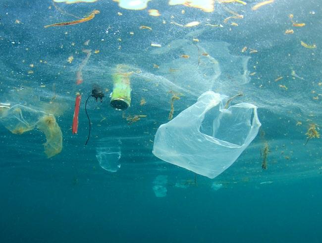 Mellan 8 och 13 miljoner ton plast hamnar i haven varje år.