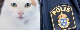 Polis tvingades skjuta torterad katt