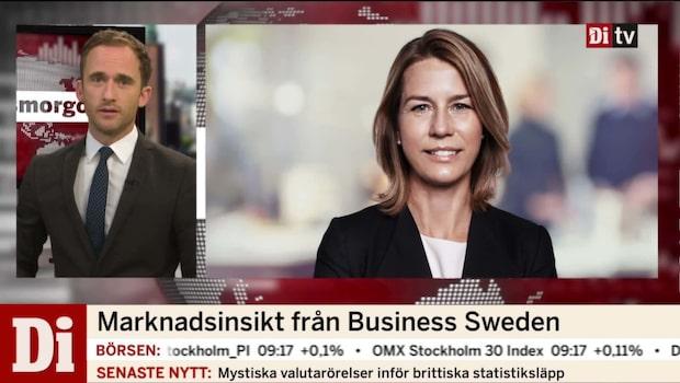 """Lena Sellgren: """"Det råder optimism i världsekonomin"""""""