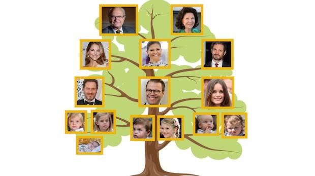 Det här är svenska kungahuset
