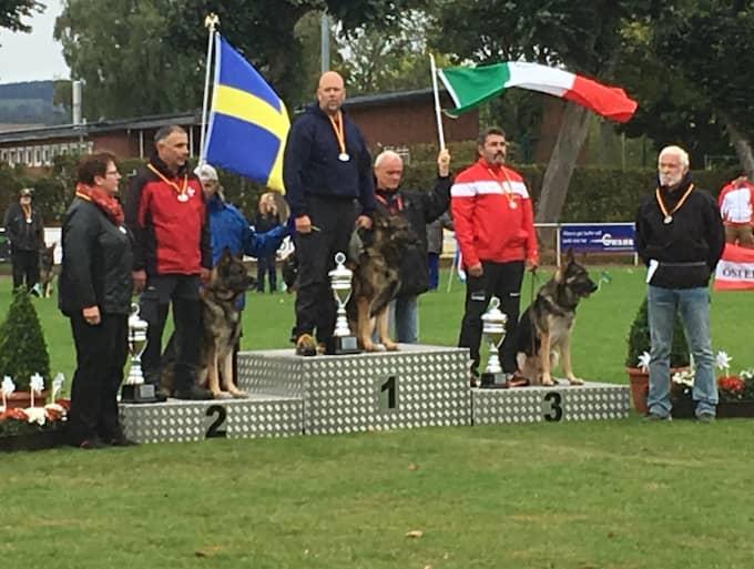 Föraren Robert Jönsson med sin hund Kustmarkens Vaquero stod överst på pallen efter helgens tävlingar. Foto: Privat