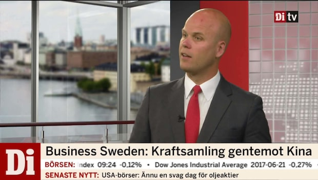 "Business Sweden: ""Kraftsamlar gentemot Kina"""