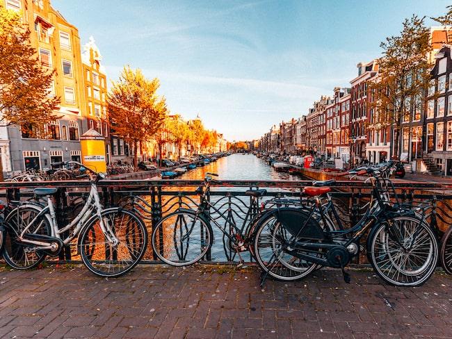 Chefen för marknadsföringen av Amsterdam menar att turister inte visar någon respekt för stadens karaktär.