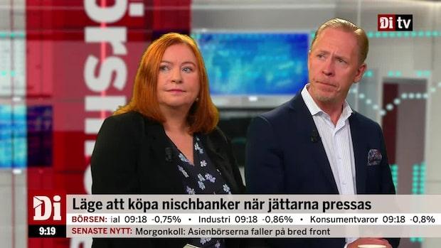 """Andersson om nischbankerna: """"Absolut mer intressant än storbankerna"""""""