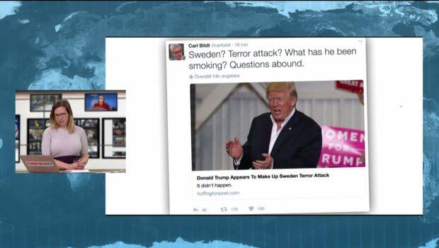 """Carl Bildt om Trumps Sverige-utspel: """"Vad har han rökt?"""""""