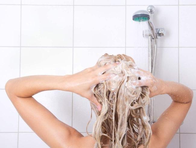 Hur tvättar du ditt hår?