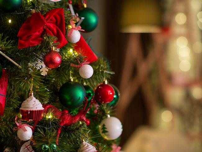 Resesajten Secret Escapes har listat hotell som satsar på julupplevelser utöver det vanliga.
