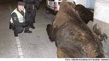 Buffeln segnade ner på Engelbrektsgatan vid ettiden i natt.