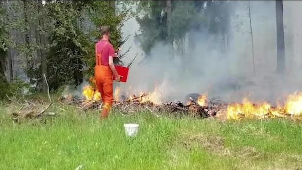 """Stor skogsbrand: """"Vi har ingen kontroll"""""""