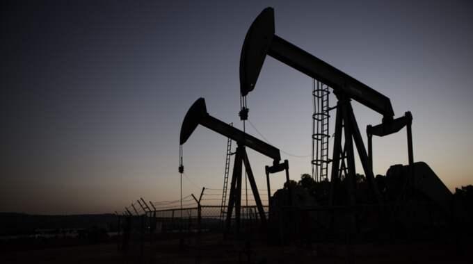 Oljepriset, en viktig indikator för den globala ekonomin, går på fredagen under 30 dollar – den lägsta siffran på 13 år. Foto: Axel Öberg