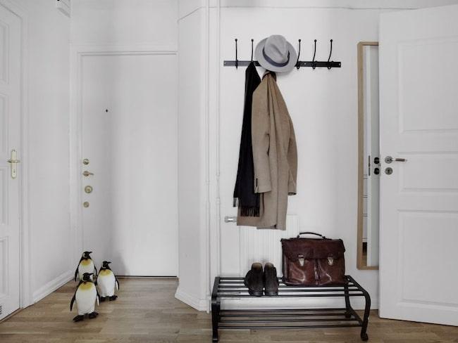 """Mäklaren kallas för """"pingvin-mannen"""" och har pingviner i alla sina lägenheter."""