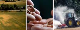 Skilsmässa mindre vanligt bland bönder