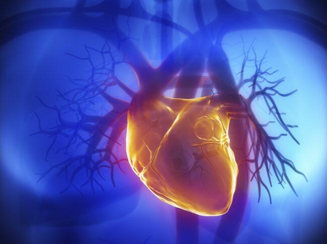 Hos en vuxen person slår hjärtat vanligtvis mellan 50 och 100 slag per minut – men hos den som får hjärtklappning slår hjärtat fortare än så.