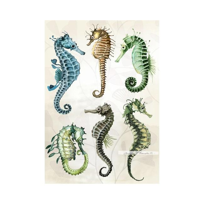 """Nya """"Seahorses""""av Anna Handell finns endast hos LEVA&BO – i 100 exemplar. Klicka på plusset i bilden för att handla hos LEVA&BO."""
