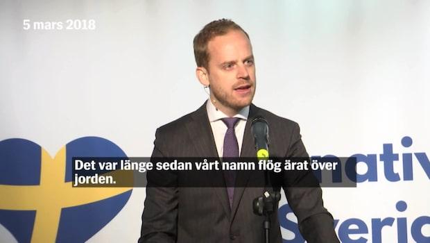 Det här är Alternativ för Sverige