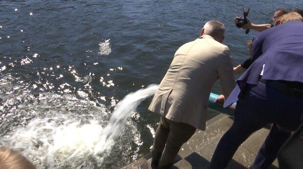 Här släpps tolvtusen öringar ut i Stockholms ström