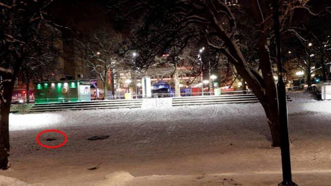 Attacken inträffade i Björns trädgård på Södermalm. Enligt åklagaren var det en tidigare konflikt som eskalerade. Foto: POLISEN