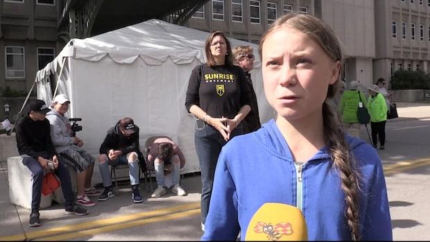 Hatarna ger sig på Greta Thunbergs syster