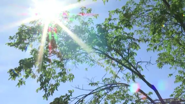 Sommaren förlängs – nu tittar solen fram