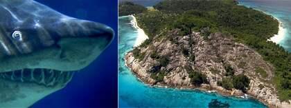 Praslin i Sychellerna uppges ha några av världens finaste stränder. Den senaste månaden har två personer dött i hajattacker - de första på 50 år. Foto: AP/Scanpix