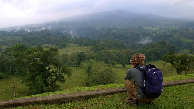 De stora regnskogarna tros nu – enligt amerikanska forskare – släppa ifrån sig mer koldioxid än de binder. Foto: KENT GILBERT/AP