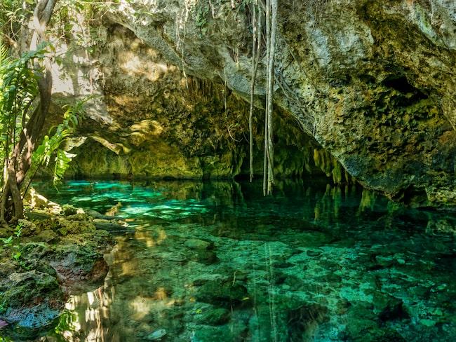 Missa inte äventyret med att bada i cenotes.