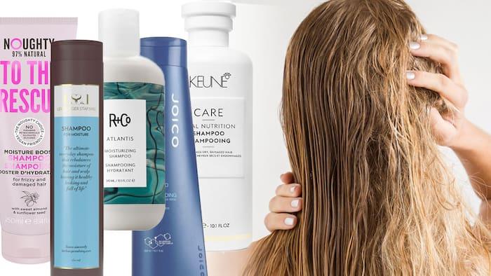bäst i test schampo torrt hår