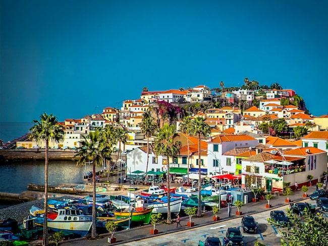 Inte långt från Funchals hamn ligger Câmara de Lobos vita stenhus och färgglada fiskebåtar.