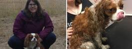 Mirakelhunden Alfons  överlevde attacken