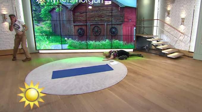 När programledaren Jenny Strömstedt ska fånga en tygsäck faller hon framstupa. Foto: TV4