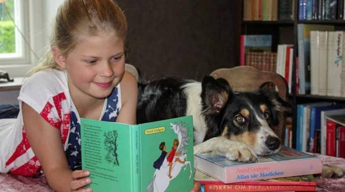 En hund som uppmärksamt lyssnar när barnen högläser. Så ska läsintresset öka och även hjälpa dem med lässvårigheter. Foto: Scanpix