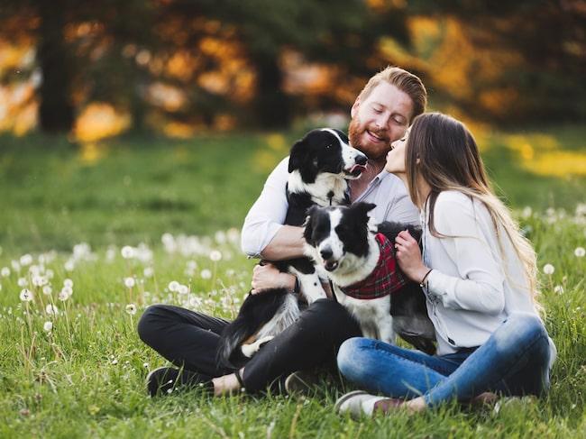 Häng i en park och bli lyckligare, enligt forskare!