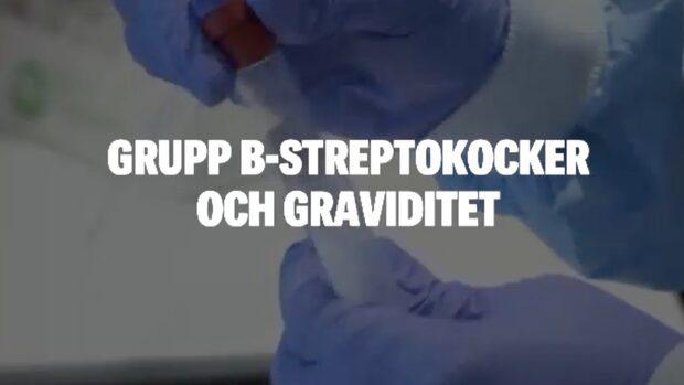 Grupp B-streptokocker och graviditet