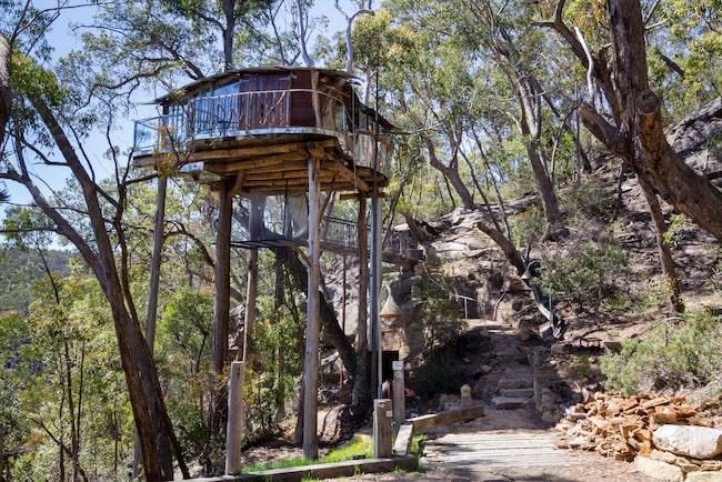 Bo i täta regnskogen Blue Mountain för 7003 kronor per natt.