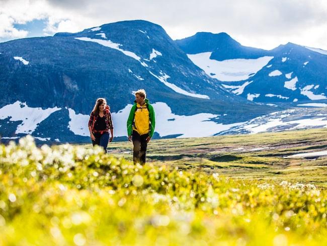 En vandring genom två fjällmassiv i Jämtland och Härjedalen.