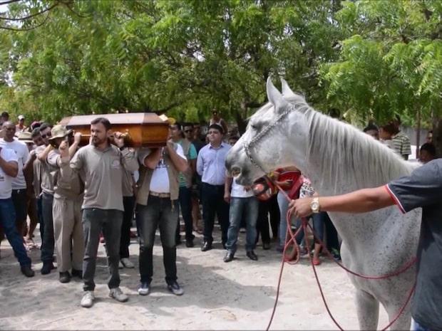 Hästen Serenos sorg på ägarens begravning