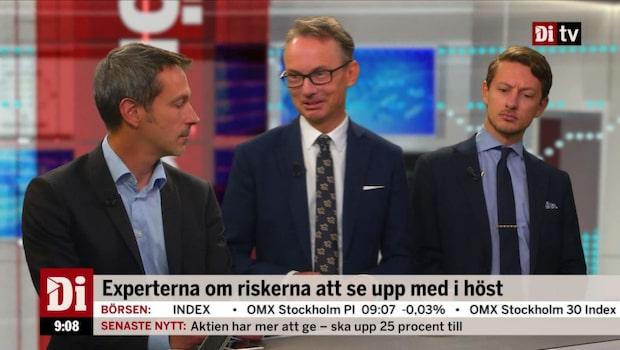 """Thorén: """"Mips och IAR:s dollarexponering är enormt hög"""""""
