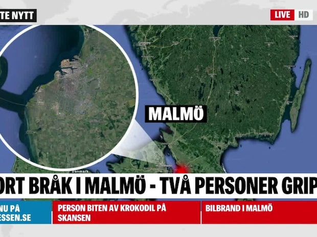 Stort bråk i Malmö – två personer gripna