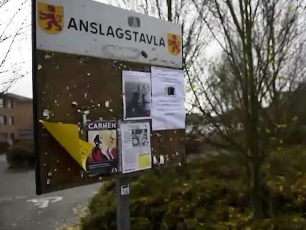 """Staffanstorp vill stänga ute IS-återvändare: """"Inte välkomna"""""""