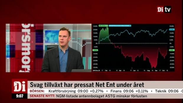 Wendel om Net Ent: Skeptisk till Red Tiger-förvärvet