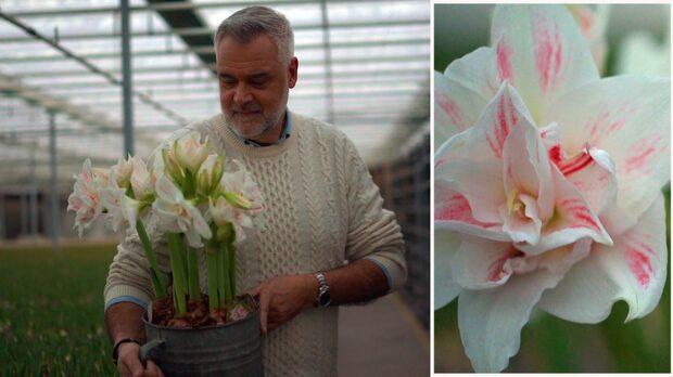 Ernst Kirchsteiger har fått en blomma uppkallad efter sig