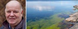 WWF: Tidig algblomning tecken på hav i kris