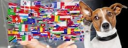 Världens 10 konstigaste språk – så låter de