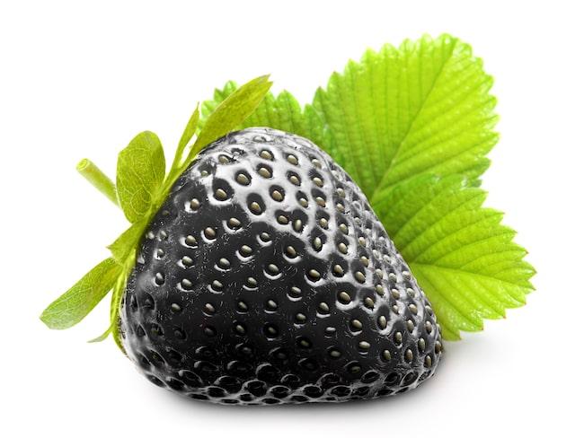 Tro inte på annonser om frön för svarta jordgubbar. Bluff!
