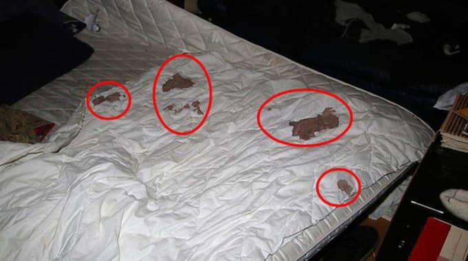 Mannen vaknade mitt i natten av smärtor i benet. Det var hans vän som huggit honom med spade. Foto: Polisen
